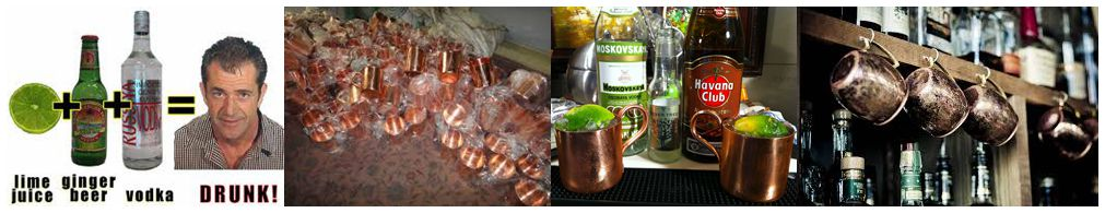 GoMoscowMule all for Moscow Mule