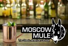 Paykoc Moscow Mule Copper mug: Personalization is Available